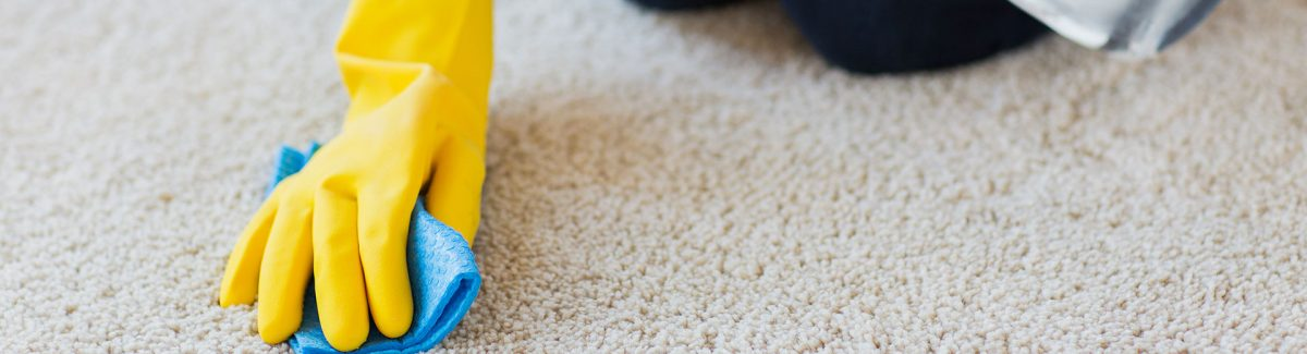 8 Easy Diy Carpet Cleaning Tips Lone Star Pro Services Blog