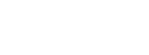 Lone Star Pro Services